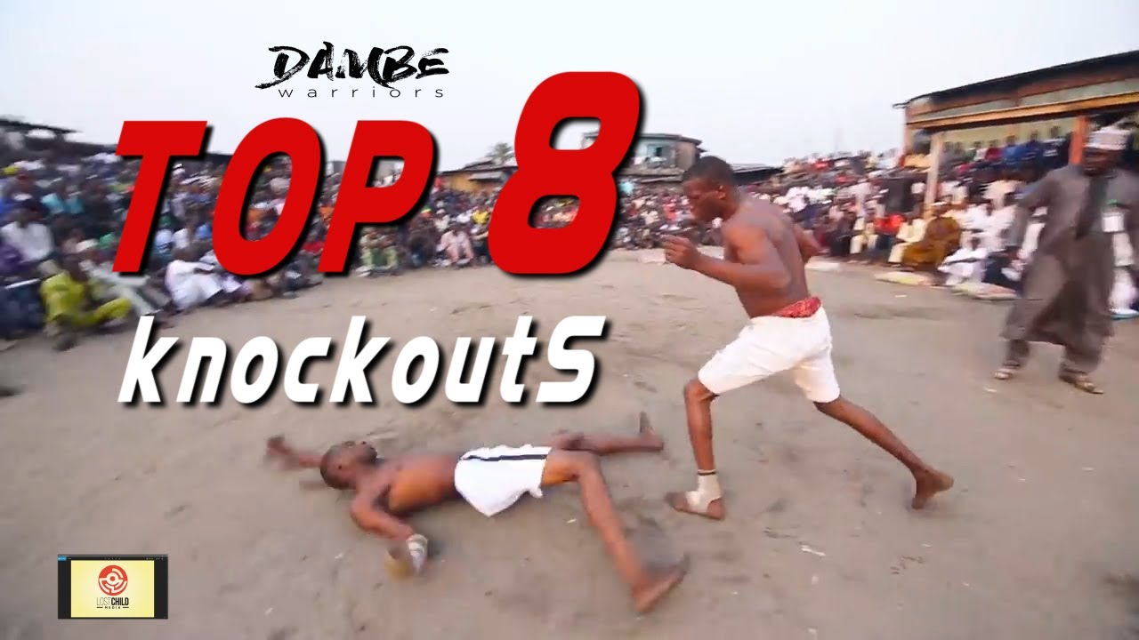 Download DAMBE WARRIORS 61: TOP 8  #Knockouts