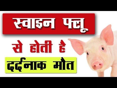 स्वाइन फ्लू के लक्षण और बचाव के तरीके || Swine Flu Precaution and Symptoms Hindi