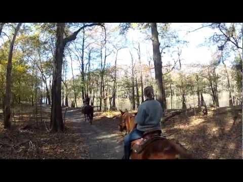 Horseback Riding in Felsenthal National Wildlife Refuge