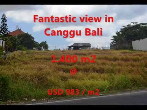 Exotic Property for sale in Bali, land for sale in Canggu Bali -- TJCG123