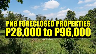 Pnb Foreclosed Properties P28,000 To P96,000