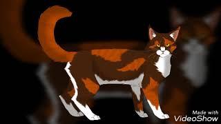 Коты воители, (картинки)