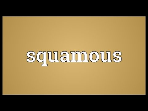 Squamous Meaning