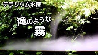 【水景】霧のテラリウム水槽」【アクアリウム】