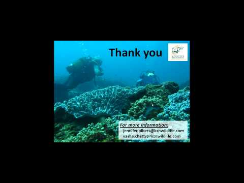 Reef Resilience Webinar: South Africa's Coral Reef Custodians and User Based Monitoring