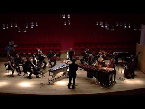 N.Rosauro-Concerto per marimba e orch.- IV- Evelyn Glennie/F.E.Scogna/I Solisti Aquilani