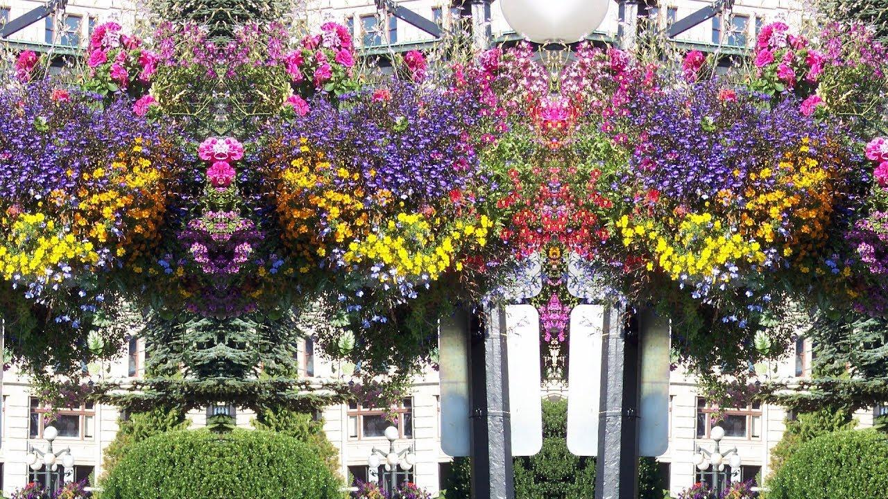 Inexpensive large planter ideas youtube planter cheap inexpensive izmirmasajfo