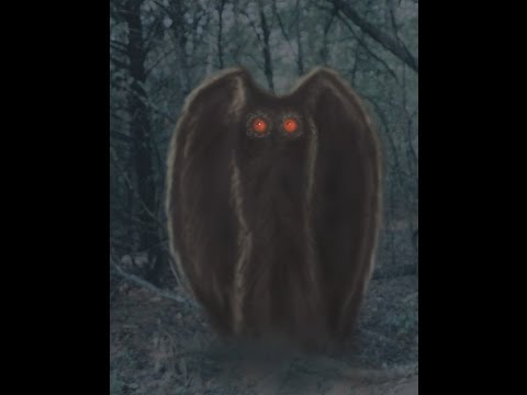 Part 8 Winged Creatures  Animal X Natural Mystery Unit  Storyteller Media
