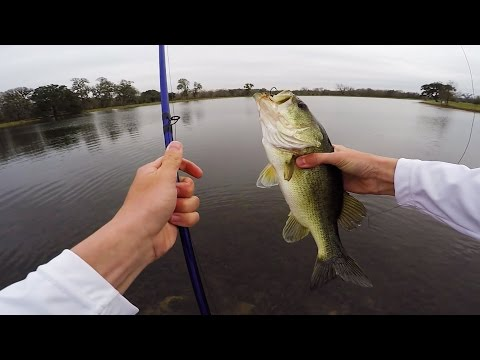 Catching Pre-Spawn Topwater Bass-BIG Texas Ranch Adventure Part 1