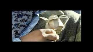 The Gift to Stalin (2008) - Подарок Сталину - origami