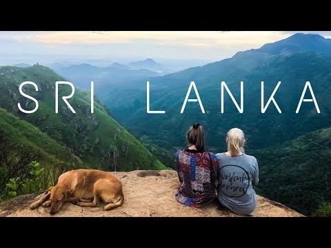 SRI LANKA | Swimming with Turtles, Elephant Safari + Kandy to Ella Train| TRAVEL VLOG
