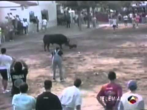 hobbit Alf-Nervio de Toro 20cm para Perros -