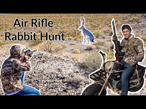 AIR RIFLE Rabbit HUNTING on New Mini Bikes!!