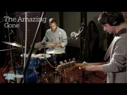 "The Amazing - ""Gone"" Live at WFUV"