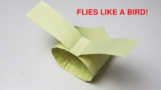 how to make a paperplane that flies like a bird - bionic paperplane viral