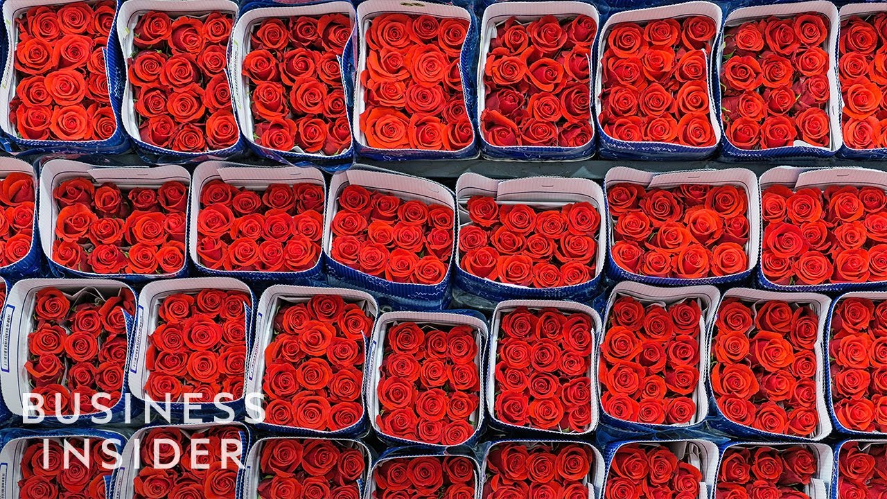 Where to buy flowers online for Mother's Day - Business Insider
