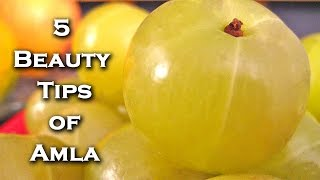 5 Indian Gooseberry Benefits For Skin and Hair By Sonia Goyal @ ekunji.com