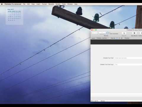 FileMaker 16 Placeholder Text Issue / Behavior Change