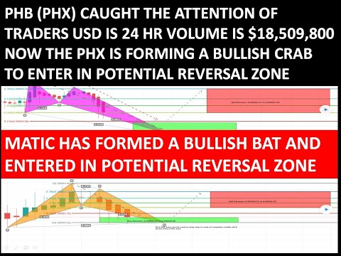 Red Pulse Phoenix (PHB Or PHX) Forming A Bullish Crab | Matic Has Formed A Bullish BAT