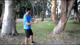 Chain-saw sound effect