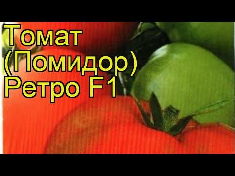 Томат обыкновенный Ретро Ф1. Краткий обзор, описание характеристик, где купить семена
