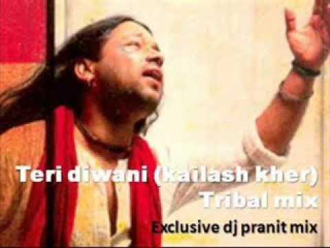 Teri Diwani kailash Kher Tribal mix  dj pranit