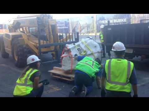 T  rex dinosaur skull delivered to Burke Museum