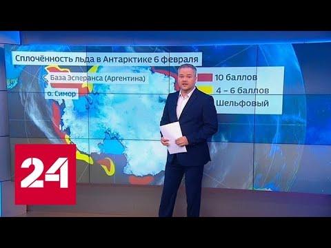 """""""Погода 24"""": загорать вскоре можно будет отправляться в... Антарктиду - Россия 24"""