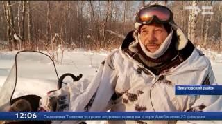 Люди помогают лесным обитателям пережить зиму