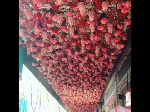 Techo de flores divina la decoraci n youtube for Adornos para plantas con llantas