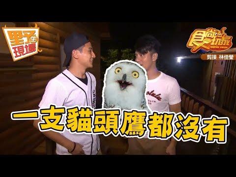 【野生花絮】食尚玩家 這是一段關於貓頭鷹的故事…