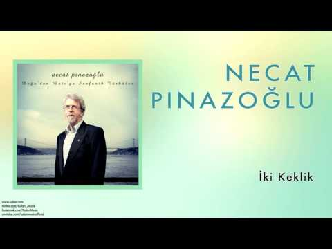 Necat Pınazoğlu - İki Keklik [ Doğu'dan Batı'ya Senfonik Türküler © 2013 Kalan Müzik ]