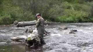 рыбалка в саянах 2016