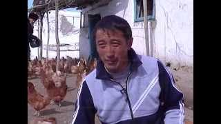 Фермер жана рыбак kg