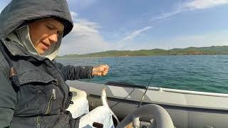 Рибалка Владивосток, ловля великої минтая з човна