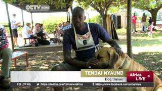 Zimbabwe: Dog Owners Have Been Hit Hard By The Biting Economy