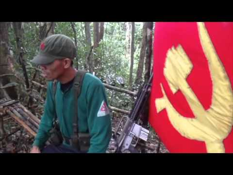NPA Palawan Message for CPP 46th Anniversary