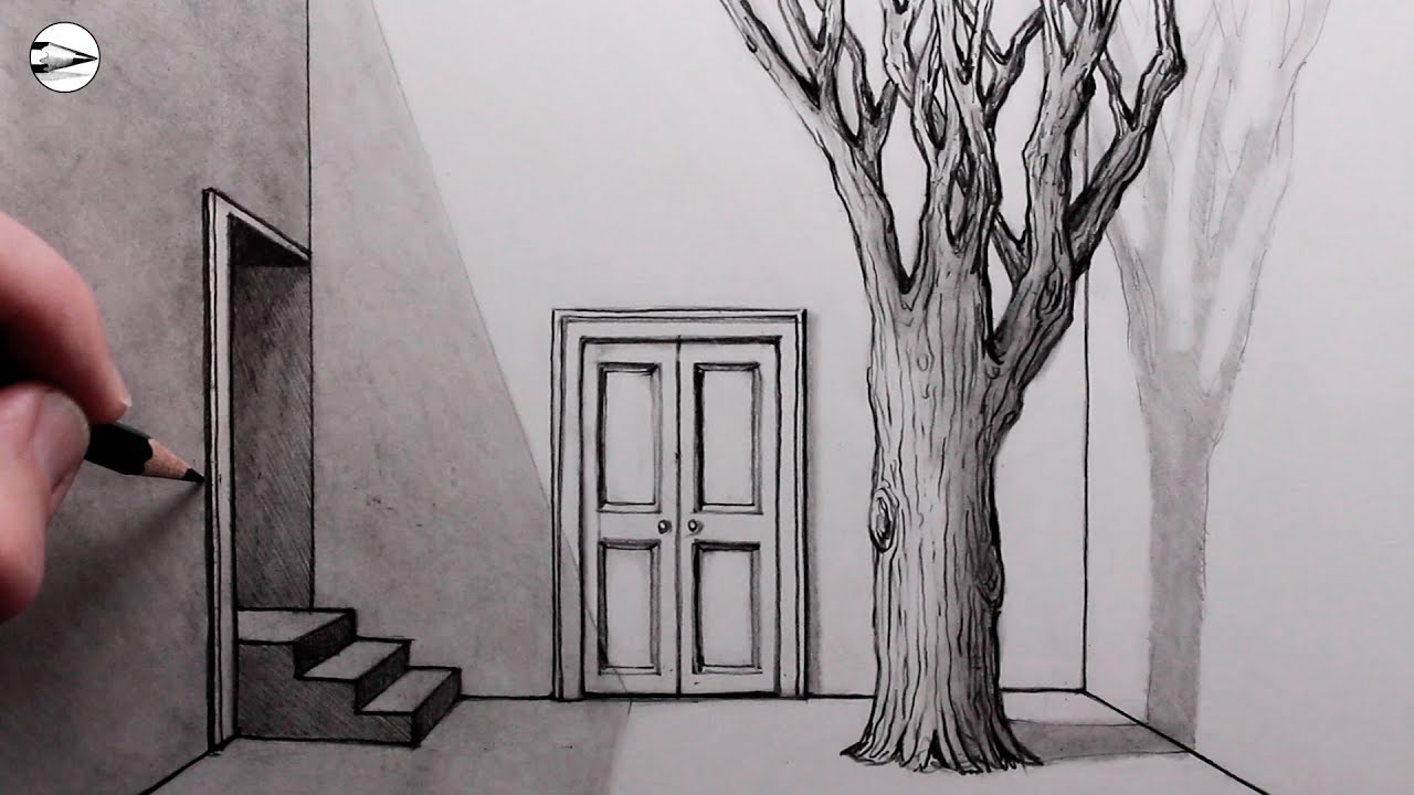 How to Draw a Courtyard: Steps and a Tree