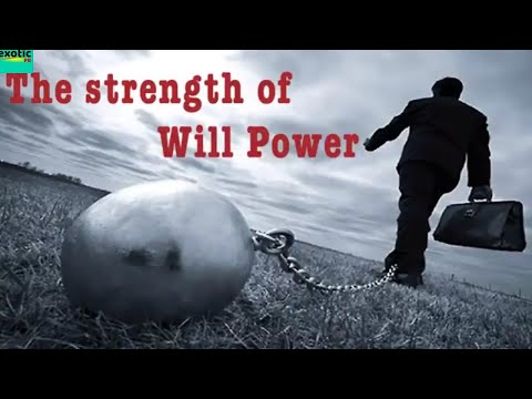 The strength of Willpower