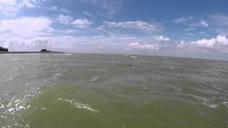 Hogan op het strand Molkwerum 2