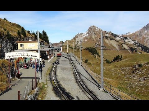 Scenic - Schynige Platte Railway for a view from the top of the world