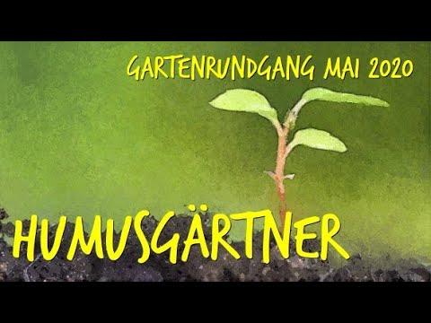Gartenrundgang Mai 2020 durch unseren Permakulturgarten zur Selbstversorgung