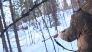 Охота на лося