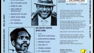 King Biscuit Boys (Joe Willie Wilkins) - Mr. Downchid