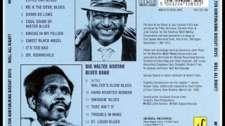 King Biscuit Boys (Joe Willie Wilkins) - Mr. Downchid