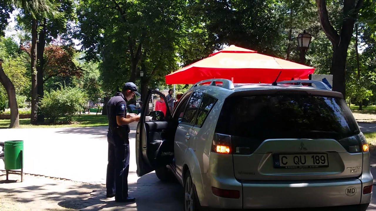 Șofează prin parc, polițistul stă la taifas