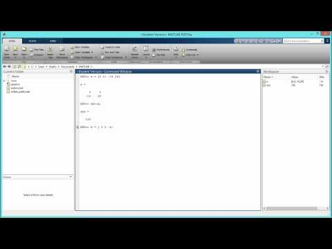 How to Find the Determinant of a Matrix in MATLAB. [HD]