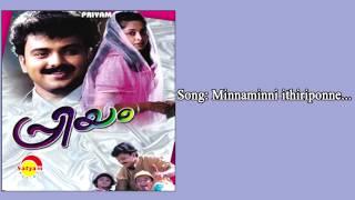 Minnaminni ithiriponne - Priyam