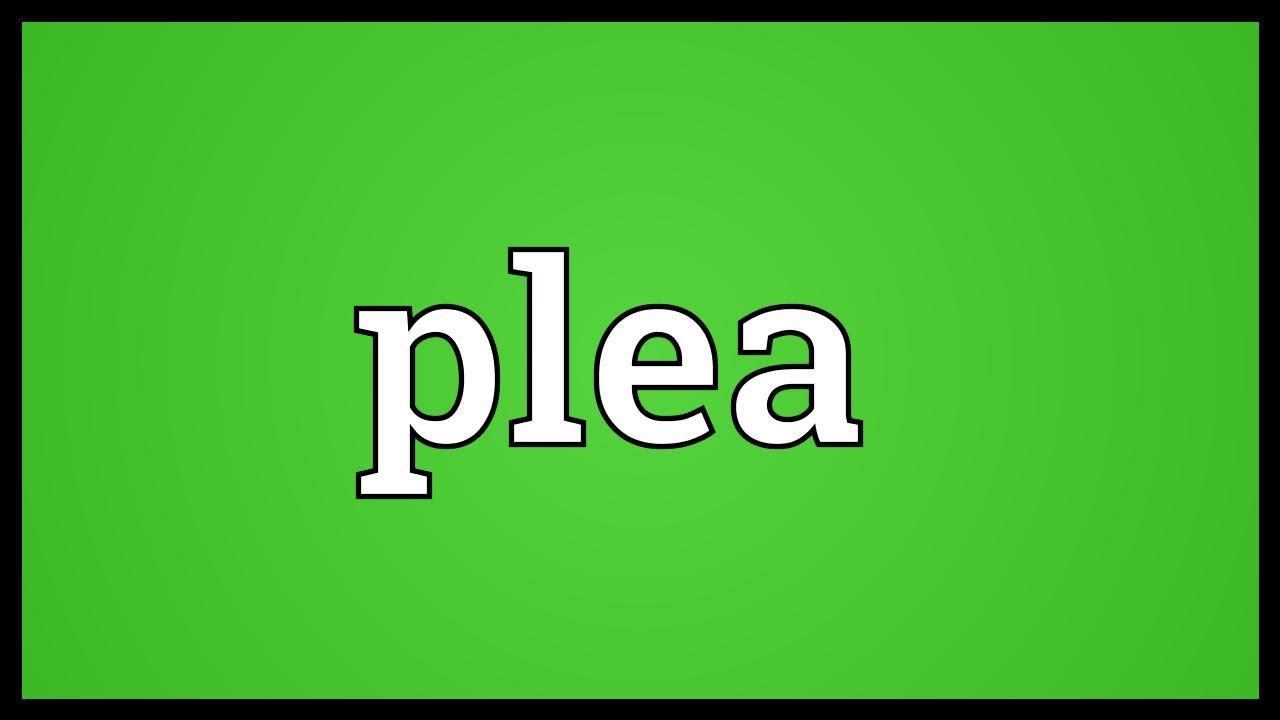 Plea Meaning
