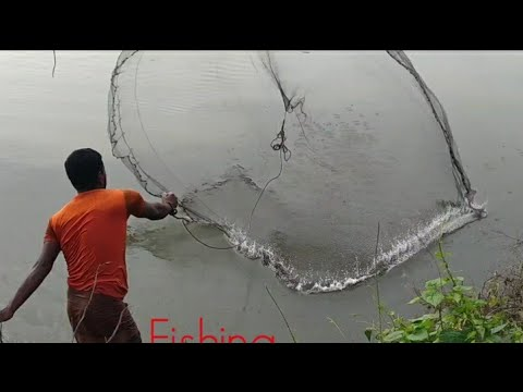 Fishermen Are Catching Different Types Of Fish From The River With Fishing Nets